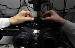 Fotostabilność cząsteczek chemicznych zawieszonych w polimerze można   wydłużyć ograniczając ich kontakt z tlenem, odkryli naukowcy z Instytutu   Chemii Fizycznej Polskiej Akademii Nauk (IChF PAN) w Warszawie. (Źródło:   IChF PAN, Grzegorz Krzyżewski)