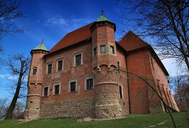 zamek-w-debnie